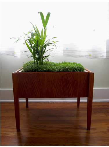 Modern Charlotte - retro wooden planter
