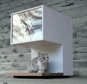 Modern Charlotte - mod cat house