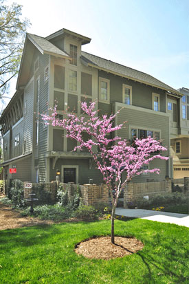 Craftsman Townhome in Dilworth