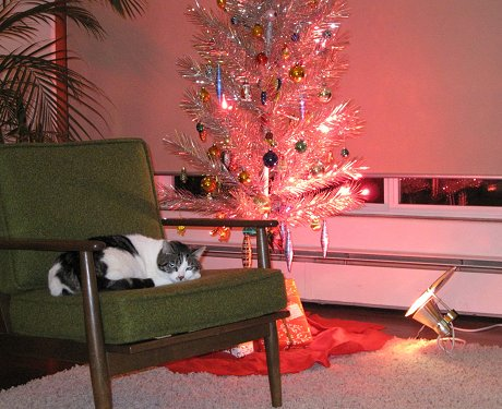 aluminum-christmas-tree-with-elvis-the-cat
